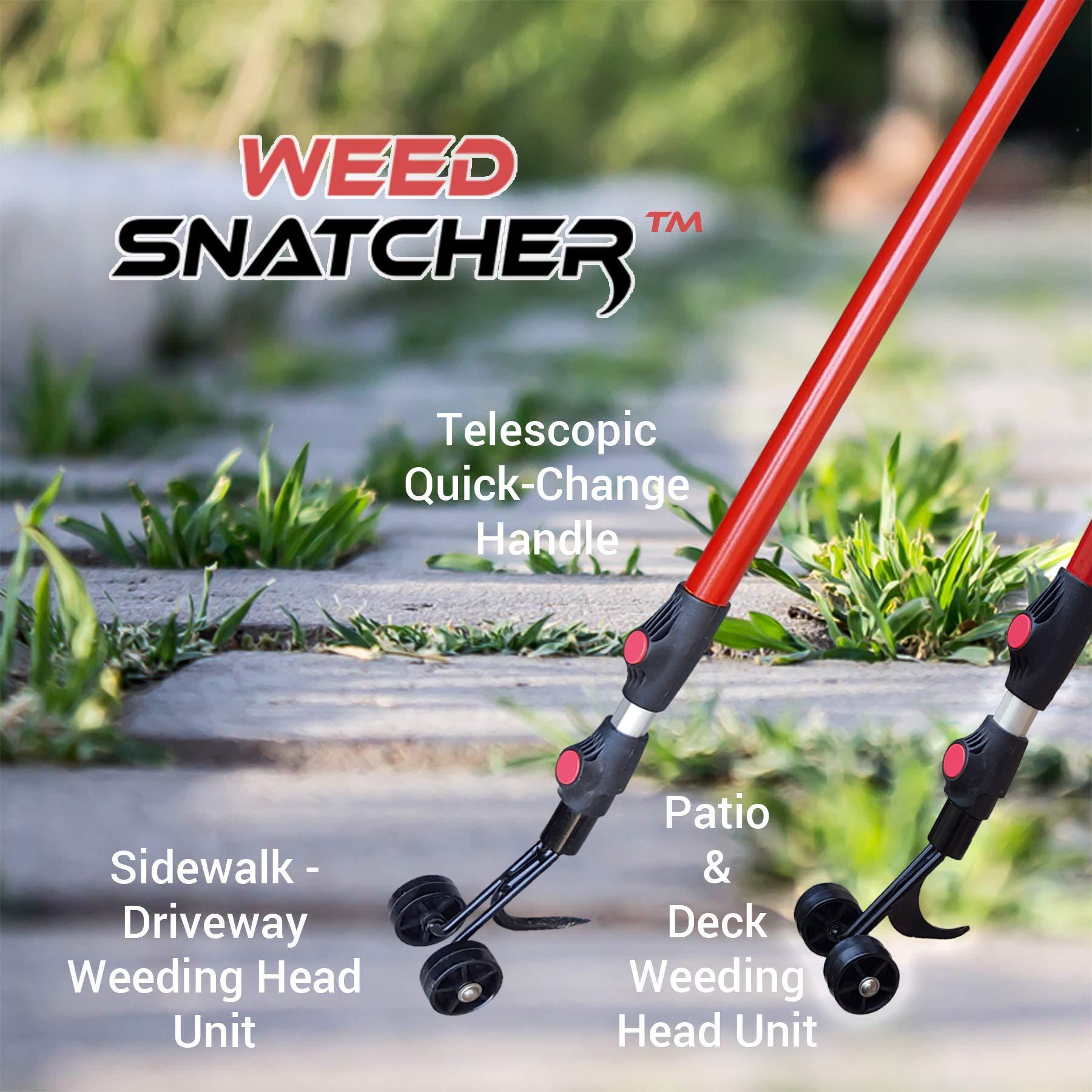 Ruppert Garden Tools,LLC The Weed Snatcher (Crack and Crevice Weeding Tool) by Ruppert Garden Tools,LLC