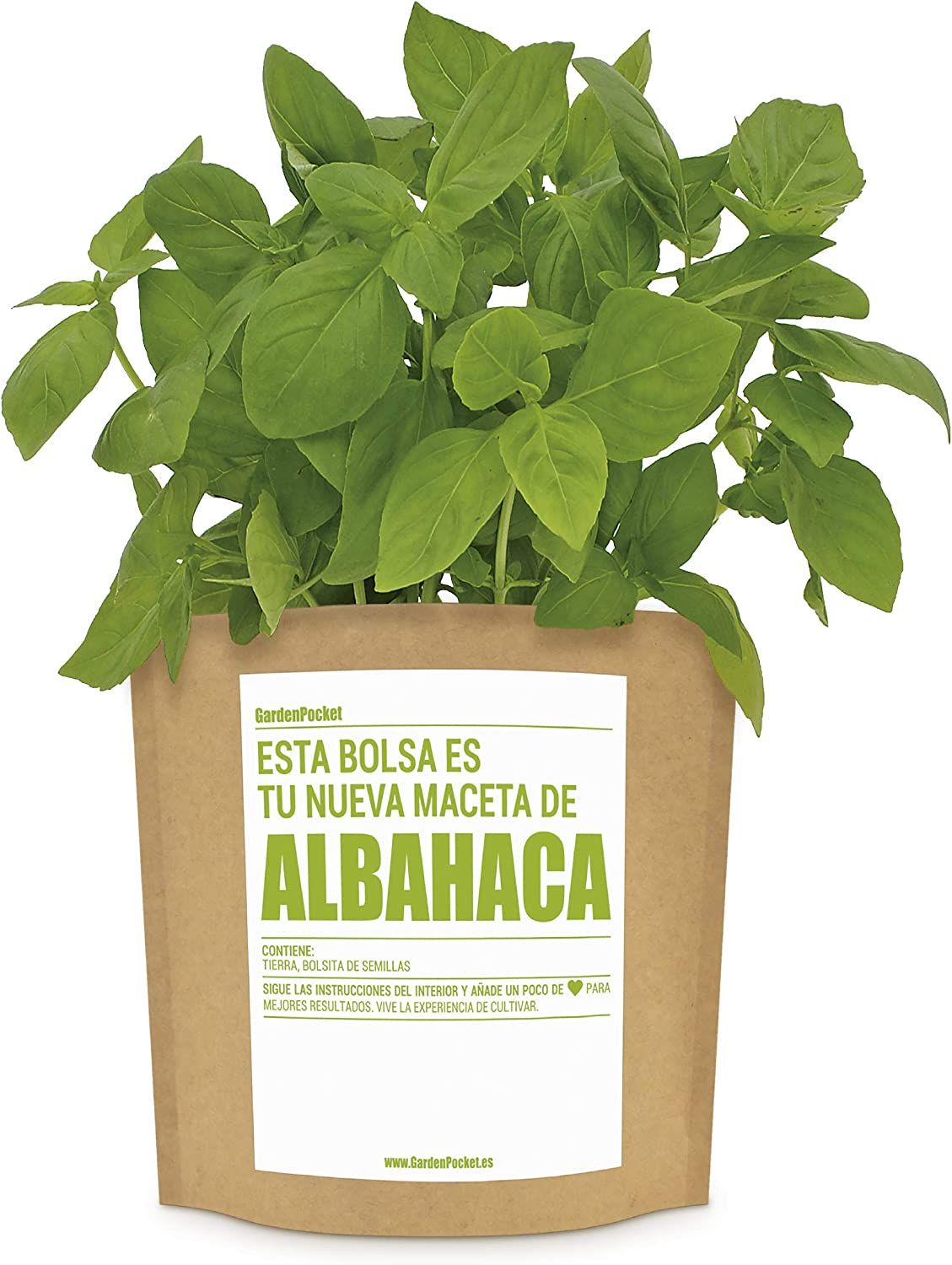 Garden Pocket - Kit de Cultivo de ALBAHACA - Bolsa Maceta: Amazon ...