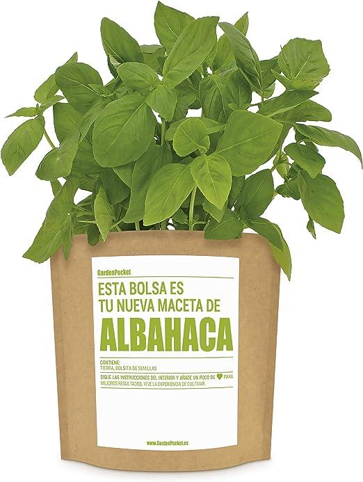 Garden Pocket - Kit de Cultivo de ALBAHACA - Bolsa Maceta: Amazon ...