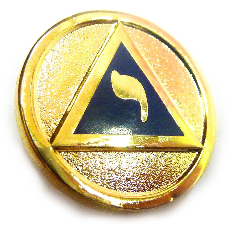 YOD Lodge of Perfection 14th Degree Scottish Rite Masonic Freemason Lapel Pin