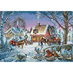 """Dimensions Counted Cross Stitch 16"""" X 11"""""""