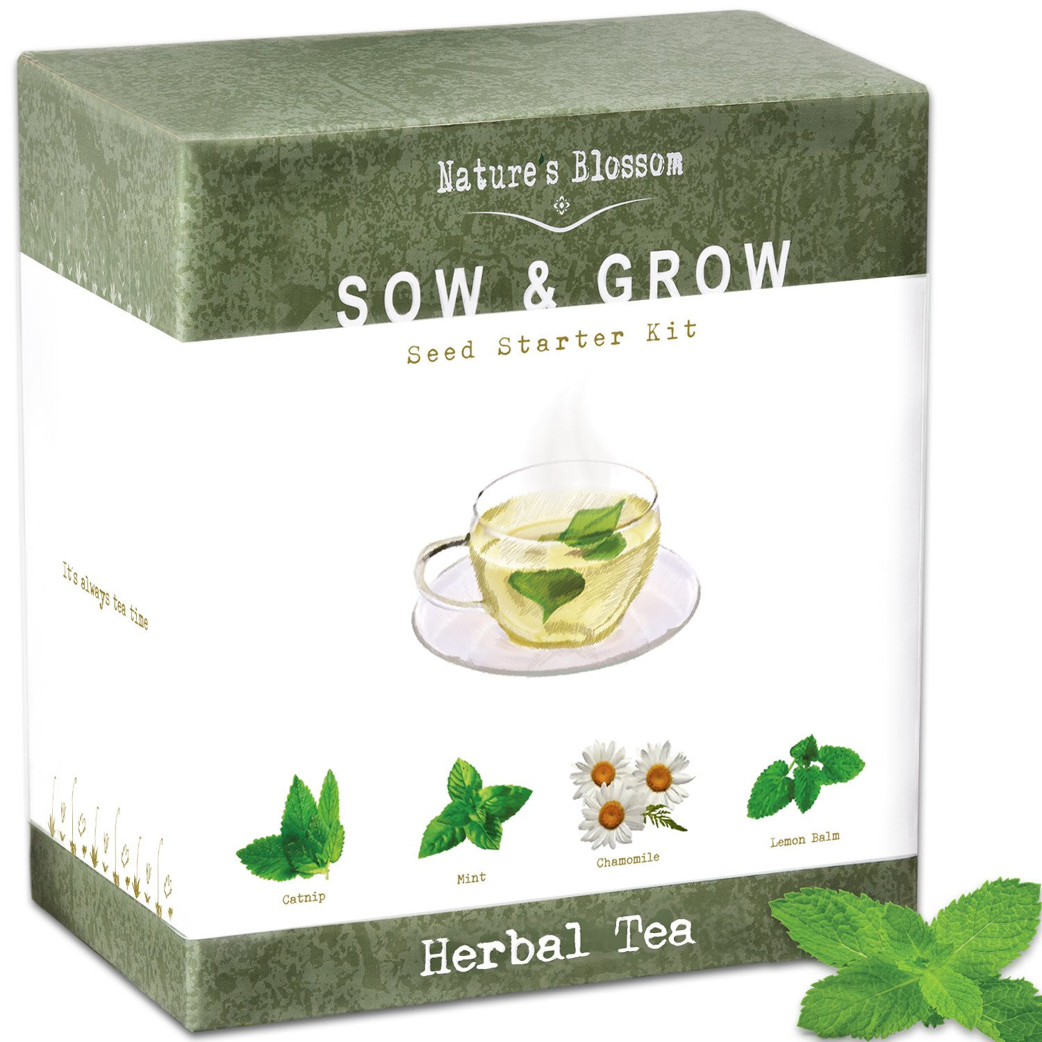 Grow 4 Herbs for Making Herbal Tea - Indoor Garden Seed Starter Kit for Planting Organic Mint Seeds, Catnip Seeds, Lemon Balm and Chamomile. Complete Growing Set for Beginners and Expert Gardeners