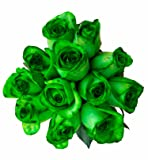 36 Stems - Fresh Cut Tinted Green Roses from Flower Explosion