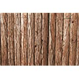 VERDELOOK Arella Wood in corteccia di pino dimensioni 1.5x3 decorazioni recinzioni