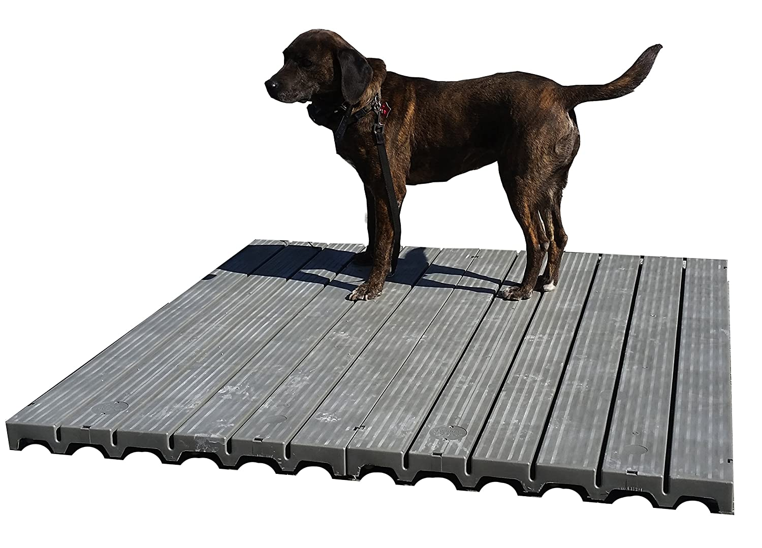 Amazon Com Raised Dog Kennel Dog Run Flooring 4 X 4