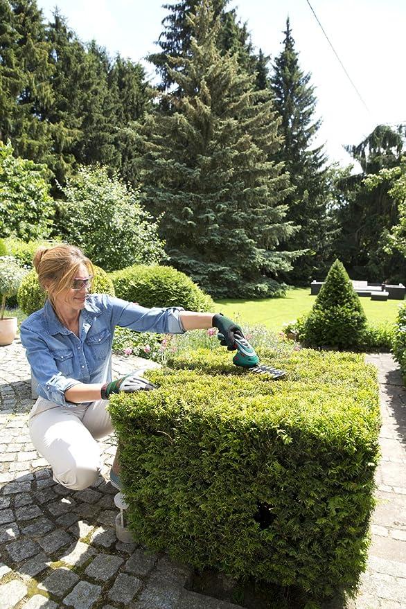 Amazon.com: Bosch Isio - Set: Jardín y Exteriores