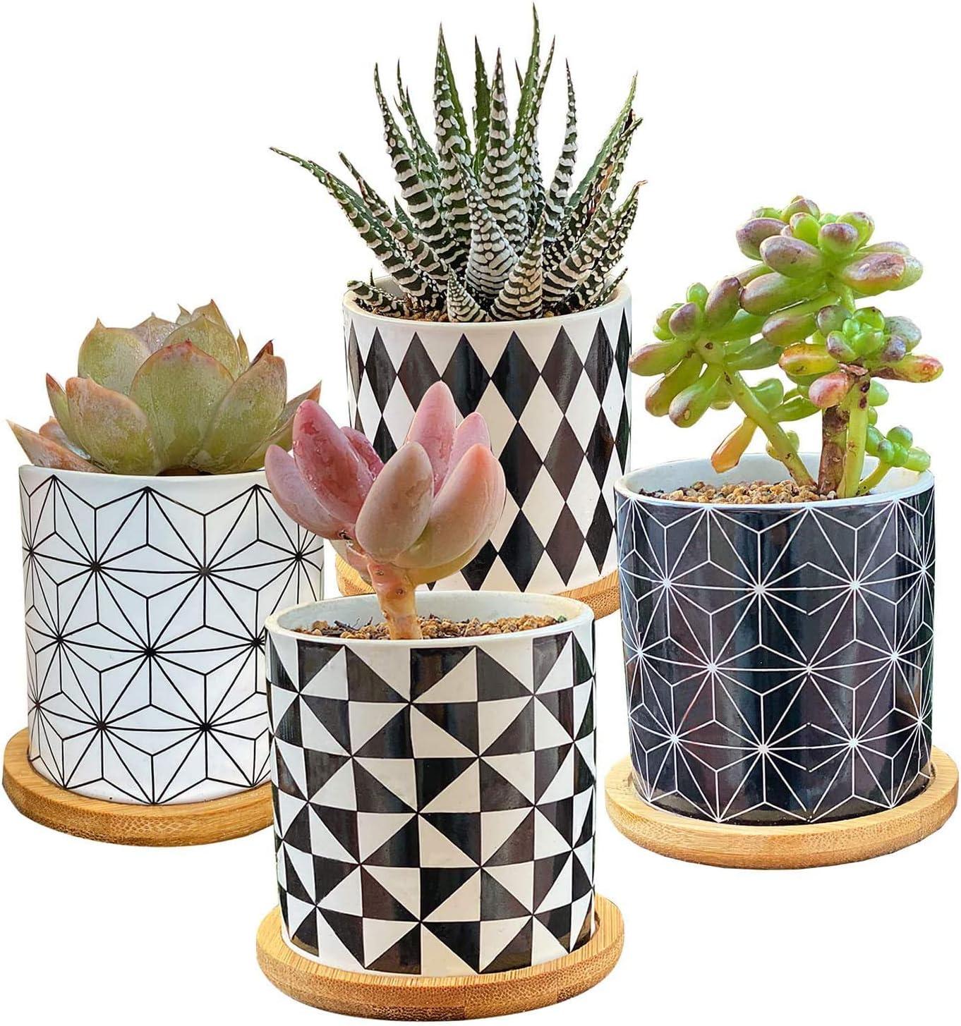 ALLFEIYA Succulent Plants Pots