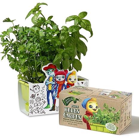 Exceptionnel Children Herbs Garden Kit, Planter Kit Comes Organic Herbs Seeds, Coloring  Planter Case U0026
