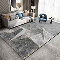 Nordic Rugs for Bedroom Grey Gold Carpets Living Room Study Room Sofa Non-Slip Washable Area Rug Extra Large Size Carpet…
