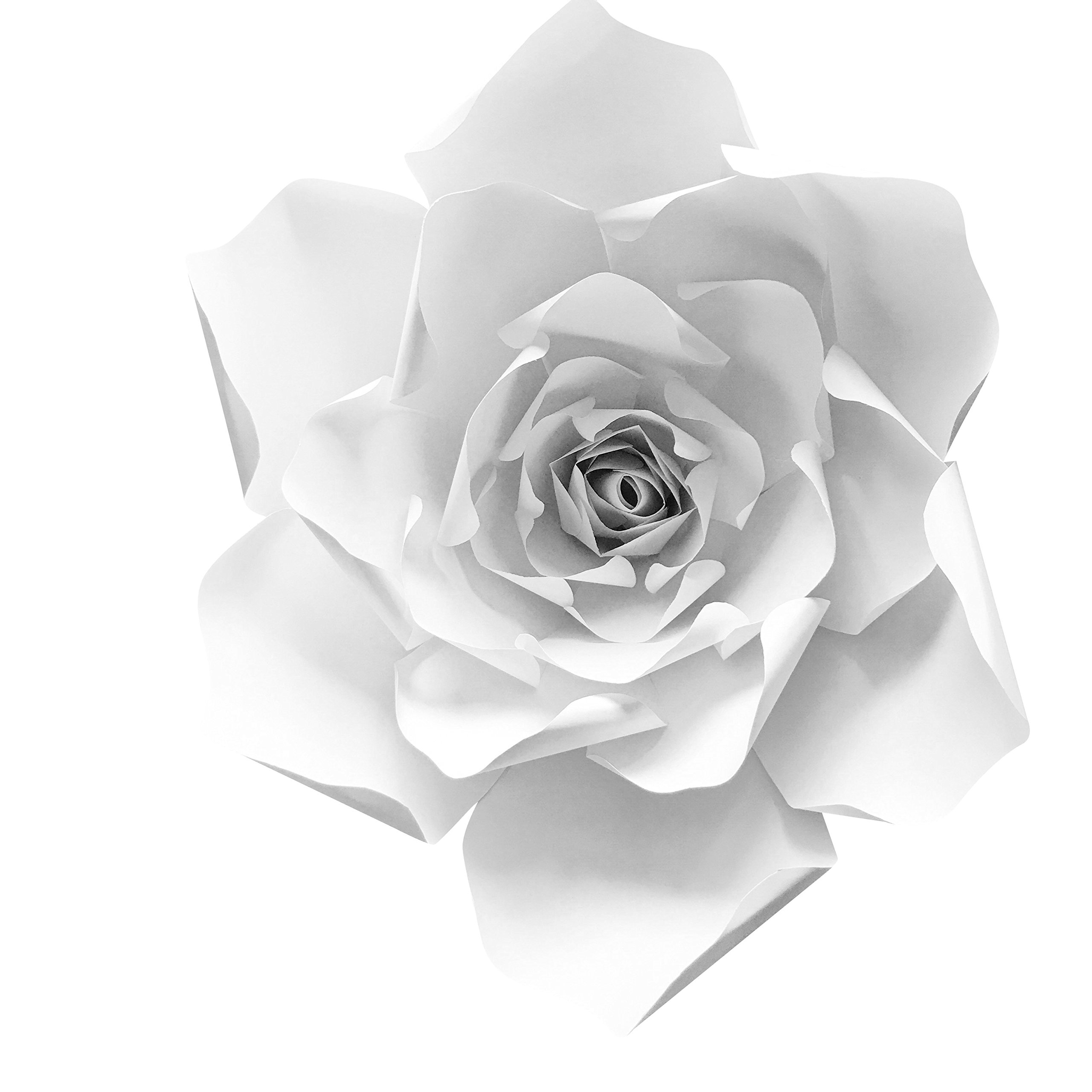 Paper Flower Templates Martha Stewart Create Best Just Papers And