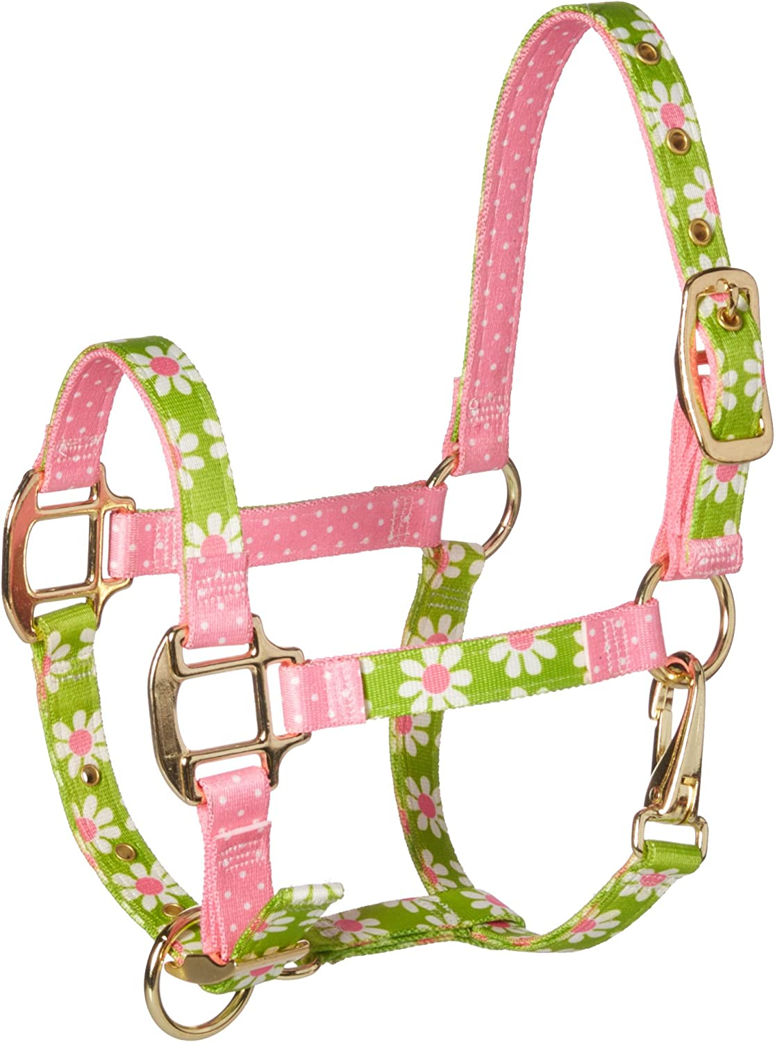 Teal Flowers Red Haute Horse TEF1200 MH High Fashion Horse Horse Halter