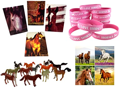 Cowgirl Horse Birthday Party Favor Supplies 60 Piece Bundle 12 Pink Wristbands