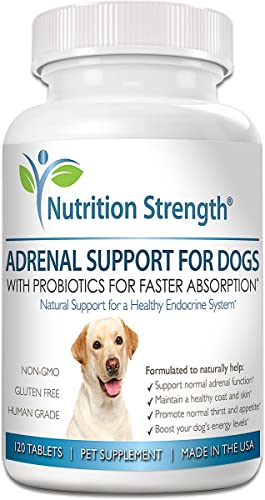 Nutrition Strength Adrenal Support