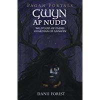 Pagan Portals - Gwyn ap Nudd: Wild God of Faery, Guardian of Annwfn