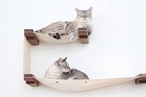 CatastrophiCreations Cat Play Set Wall Mounted Lounge, Climb, Lounge and Play Furniture Cat Tree Shelves for Pets