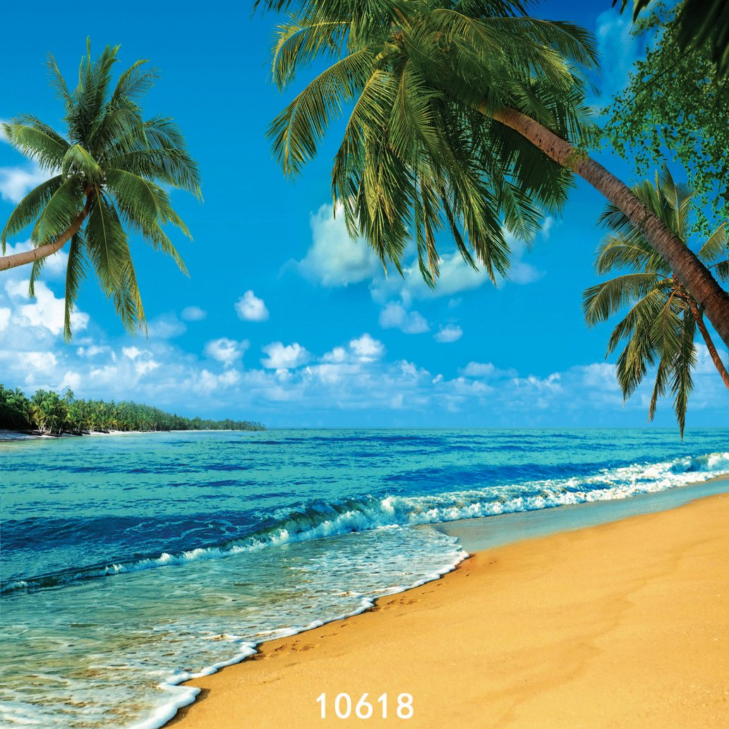 SJOLOON 10X10ft Tropical Photography Backdrop Beach Summer Holidays Photo Backgrounds Coconut Trees Blue Sky White Clouds Beautiful sea Photography Backdrops 10618