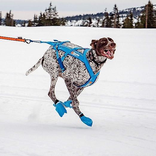 Non-stop dogwear Freemotion arnés para Perros sin parar 10º ...
