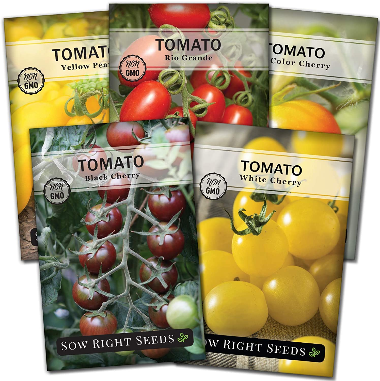 Sow Right Seeds - Cherry Tomato Seed Collection for Planting - Black, Yellow Pear, White, Bi-Color and Rio Grande Cherry Tomatoes. Non-GMO Heirloom Varieties to Plant and Grow Home Vegetable Garden