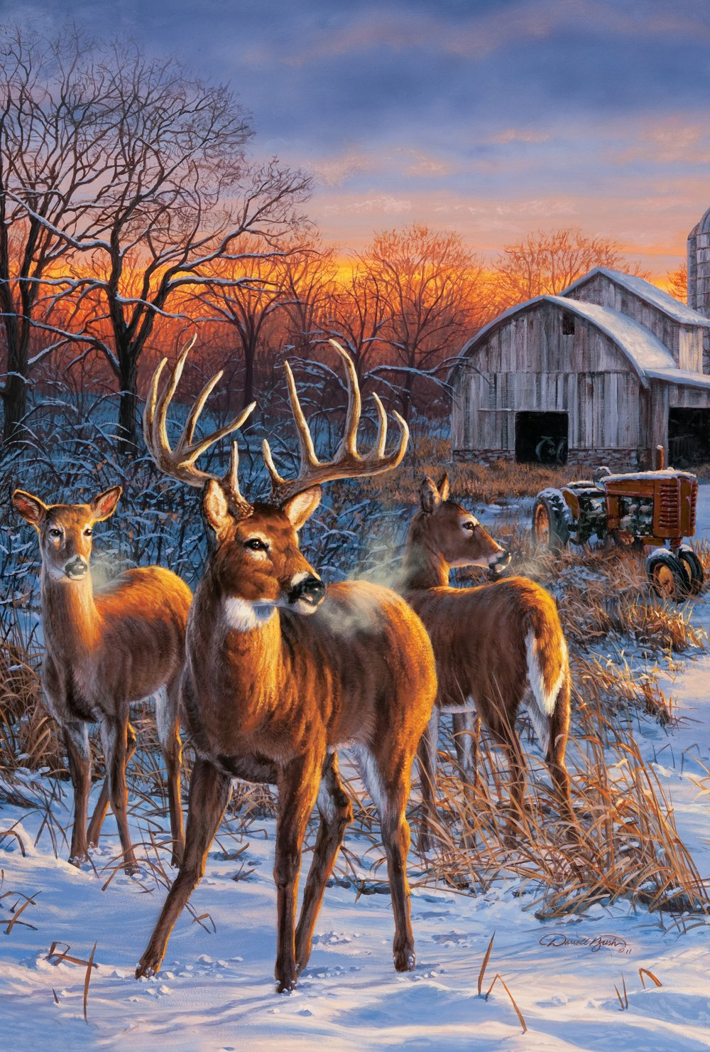 Toland Home Garden Deer Glory 28 x 40 Inch Decorative Winter Snow Country Farm Buck House Flag - 109710
