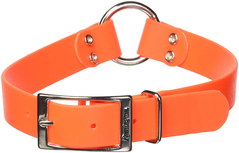 Amazon.com: Remington - Collar impermeable para perro, color ...