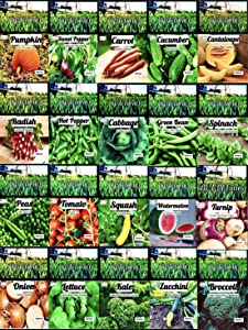 Set of 20 Vegetable Seeds Perfect for Your Home or Survival Garden 20 Varieties-Seeds are Heirloom-Non-GMO, Non-Hybrid! USA Grown. by B&KM Farms-20 Different Varieties. 20 Variety Seed Pack