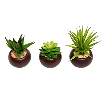 Charming Potted Artificial Mini Succulent Plants, Set Of 3   MyGift