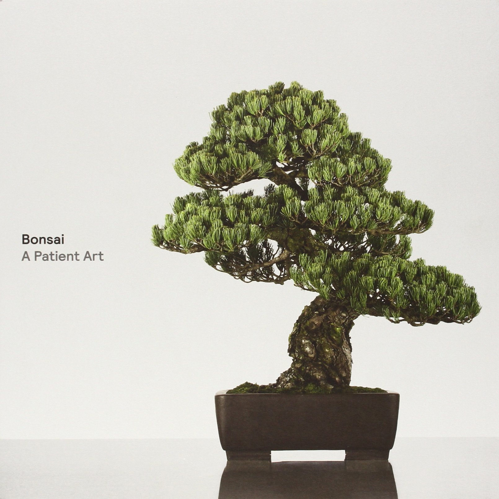 Bonsai Patient Art Susumu Nakamura product image