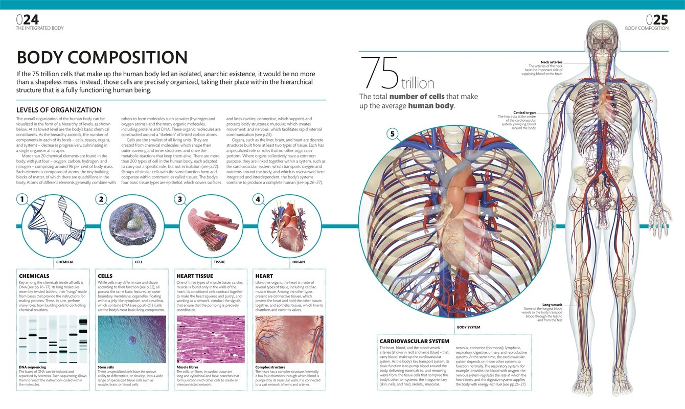 The Complete Human Body The Definitive Visual Guide Pdf