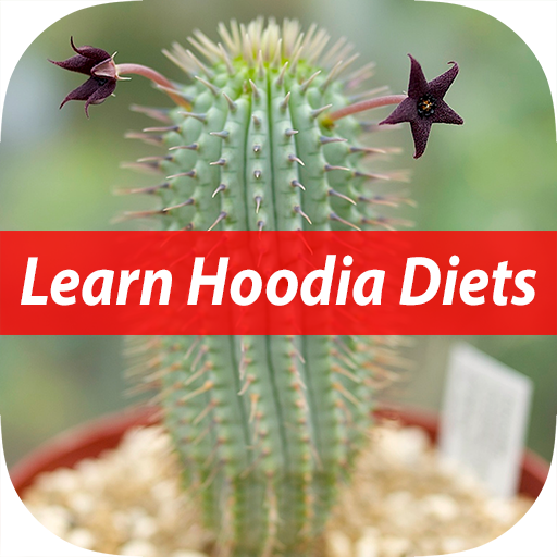 Facts of Hoodia Diet For Beginners (Gordonii Diet Weight Loss)