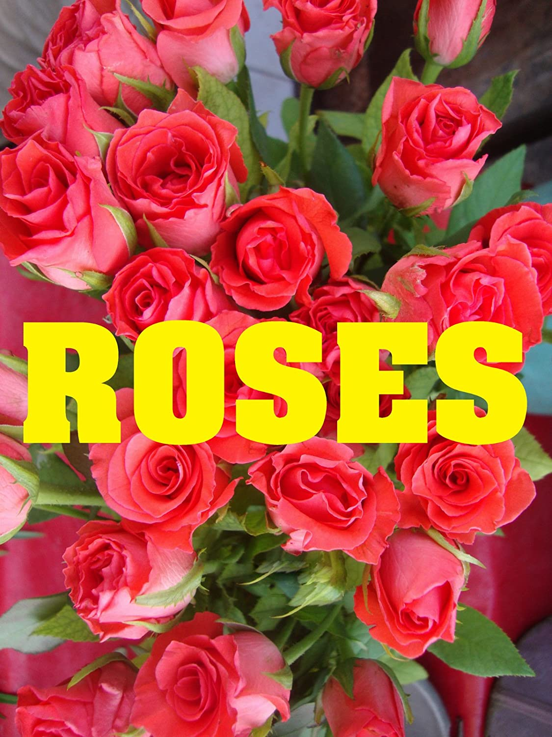 Roses 18x24 Business Store Retail Signs