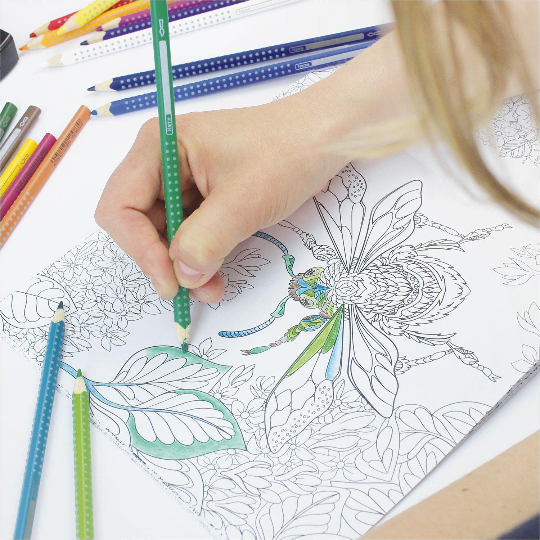 beneart Malbuch Für Erwachsene Undiscovered Nature Entdecke Die Natur Ausmalbücher Malvorlagen Florale Bilder zum Ausmalen Amazon Spielzeug