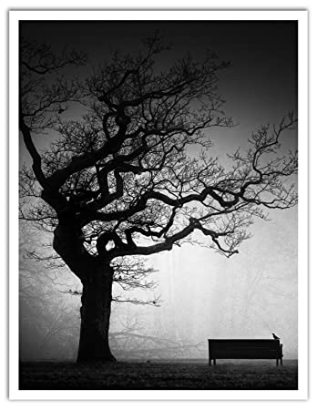 JP London POS1X945542 Jpl and Oscar Lopez Present A Near Future Solitude Bench Tree Zen Quiet Park 25.75 by 19.75 Peel and Stick Fully Removable Wall Poster Mural