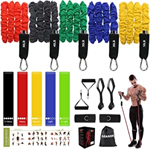 Resistance Bands Set for Men, (17pcs) Home Gym Exercise Fitness Resistance Bands with Handles, Door Anchor, Waterproof Carry Bag, Legs Ankle Straps for Resistance Training, Home Workouts,Yoga