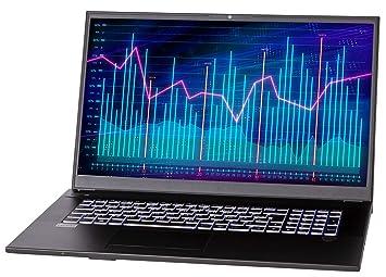 NEXOC Office - Ordenador portátil (17,3 Pulgadas, Full HD, i3 ...