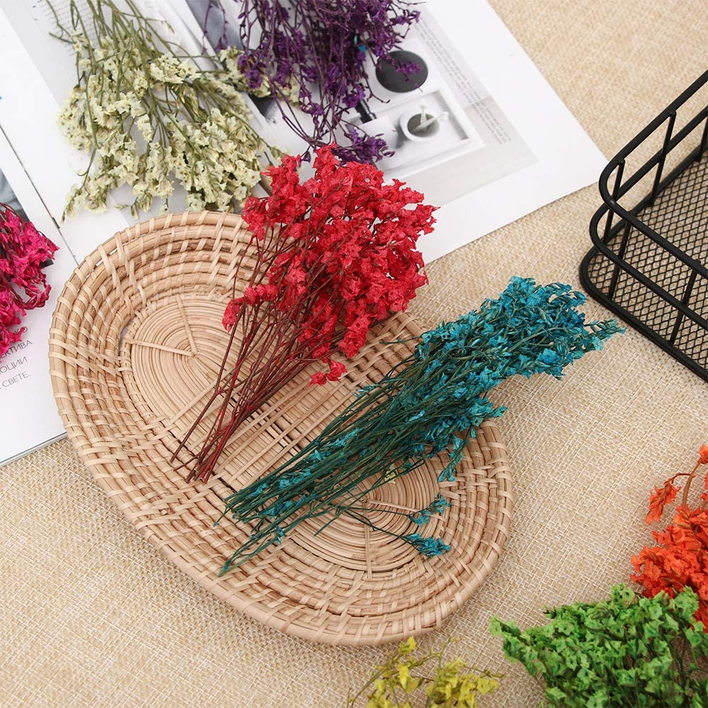 Purple Eadorns Dried Flowers,Crafts Gifts DIY Scrapbooking Dried Flowers Crystal Grass Floral Plants,for Party/&Home Decor