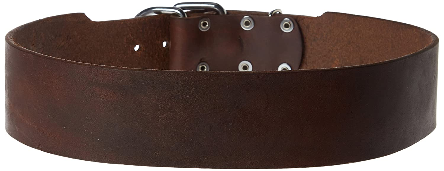Dean & Tyler  B and B Brown Basic Leather Dog Collar with Strong Nickel Hardware, Size 32-Inch by 2-1 4-Inch, Fits Neck 30-Inch to 34-Inch