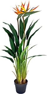 Werandah Artificial Silk Bird of Paradise Palm Tree Potted Plant, Lush, 3.6' Ft Fake Tropical Palm Tree Faux Strelitzia for Home Office Decor Green