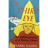 The Third Eye (English Edition)
