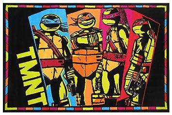 Amazon.com: Teenage Mutant Ninja Turtles 39