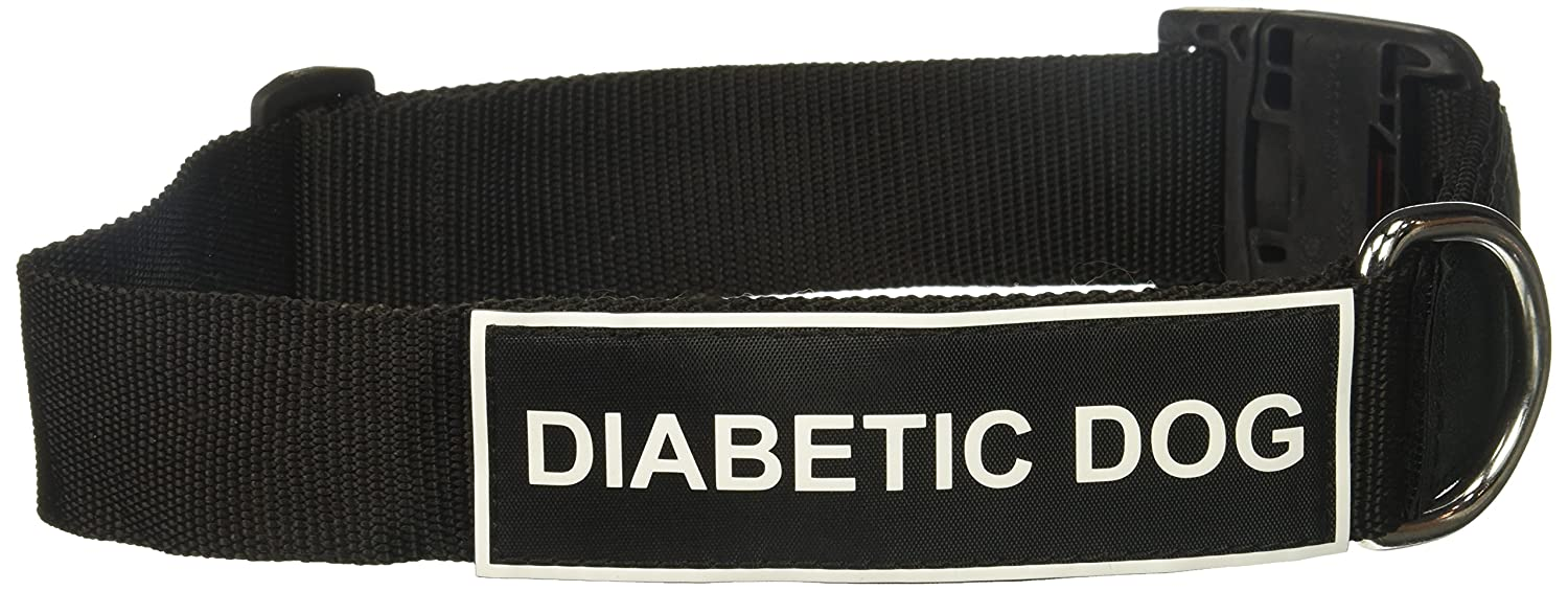 Dean and Tyler Patch Collar , Nylon Dog Collar with DIABETIC DOG Patches Black Size  Large Fits Neck 26-Inch to 37-Inch