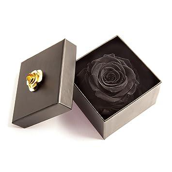 Infinity Rose Haltbar 3 Jahre Geschenk Für Damen Von Rosemarie