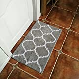 Hihome Doormats Non-Slip Outdoor Door Mats with Rubber Backing Inside Entrance Rugs