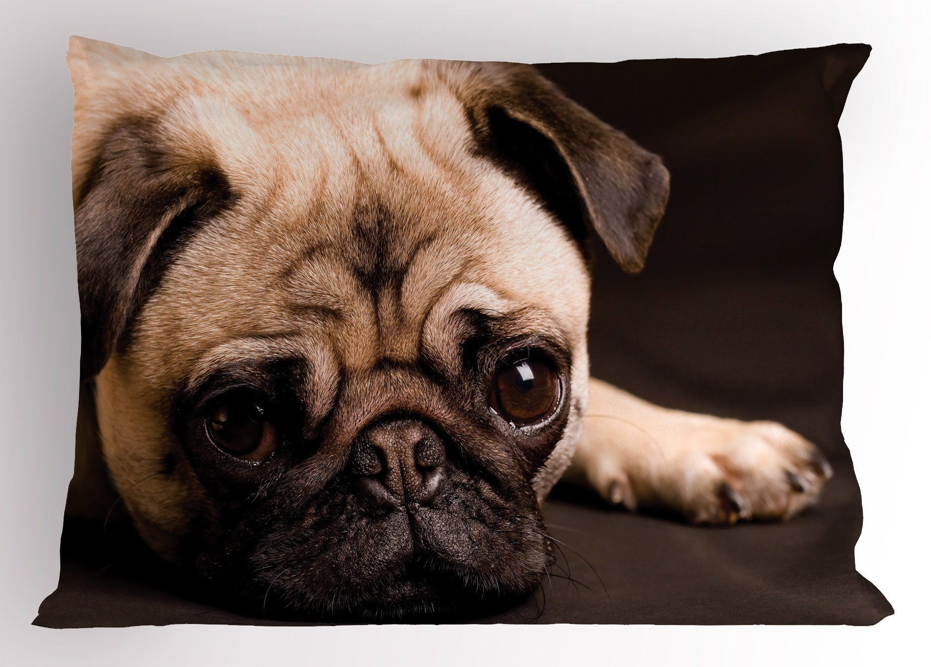 Ambesonne Pug Pillow Sham, Cute Photograph of a Pug with Its Little Paws Pure Bred Dog Image Animal Fun, Decorative Standard King Size Printed Pillowcase, 36 X 20 inches, Brown Pale Brown