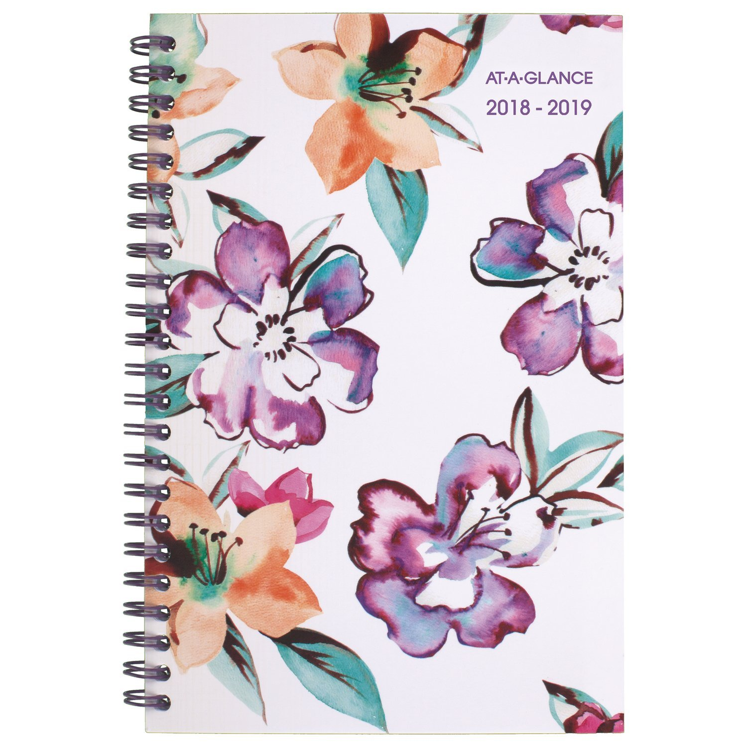 AT-A-GLANCE 2018-2019 Academic Year Weekly & Monthly Planner, Small, 4-7/8 x 8, Aspire, Coral (1022-200A-27_1) ACCO Brands