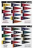 NHL Rank 'Em All 31 Teams Mini Pennant Magnet