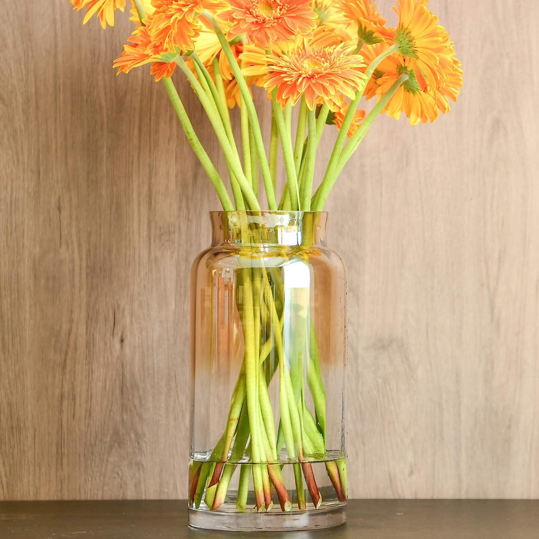 Slegan Vintage Glass Vase 12 Inch Hand Blown Optic Amber Vase for Home Decor (Misty Amber)