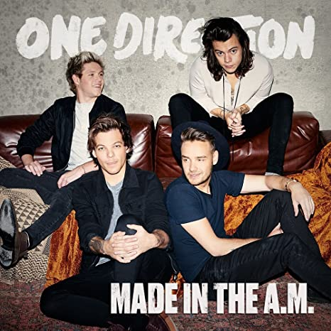 Image result for made in the am