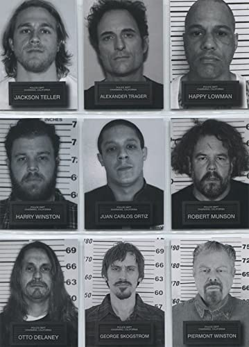 Sons of Anarchy Seasons 6 & 7 Mugshots Complete 9 Chase Card Set at