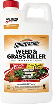 SPECTRACIDE 0.5 Gallon Post-Emergent Weed And Brush Killer
