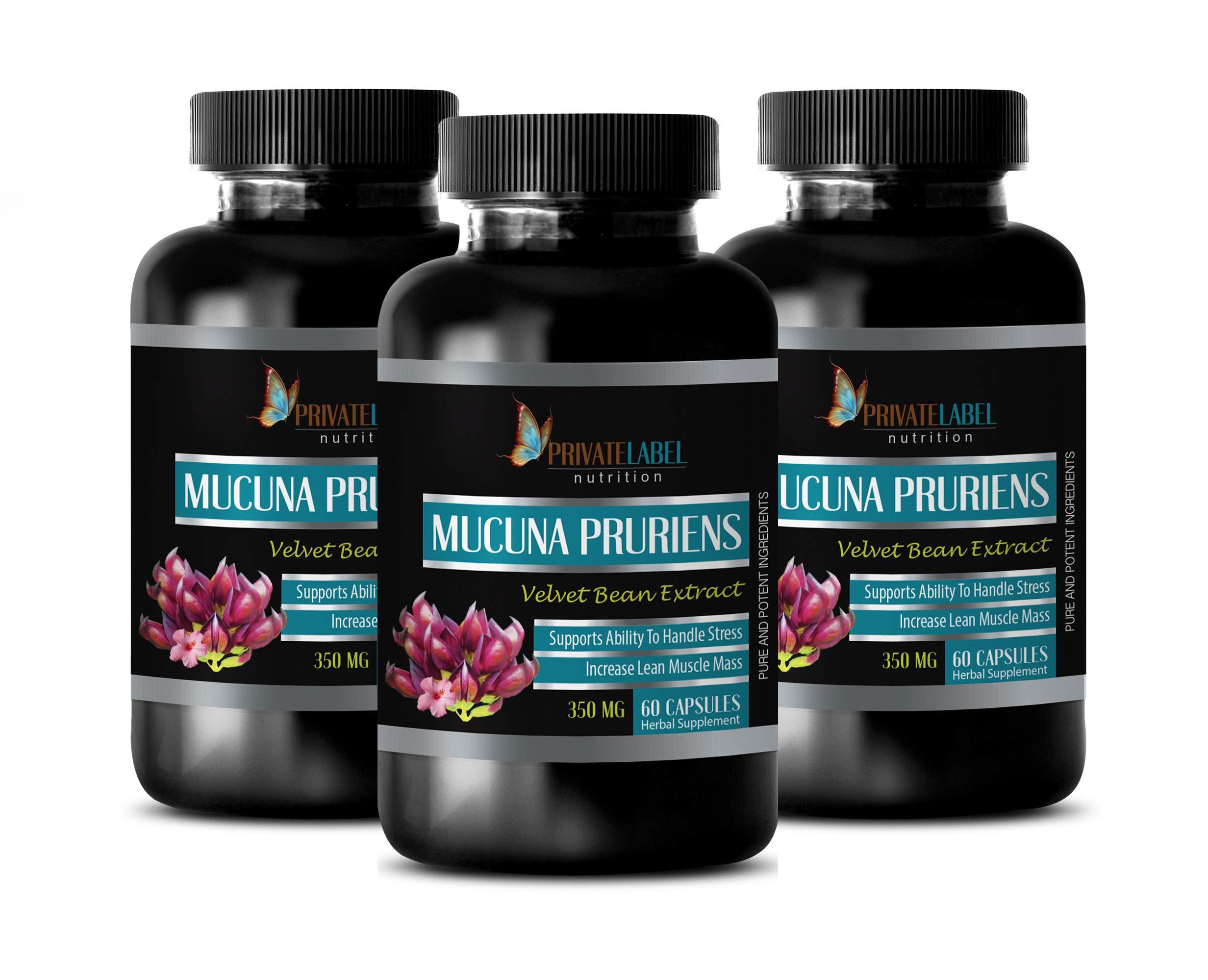 Mood Swings Supplements - MUCUNA PRURIENS 350 MG - Velvet Beans Extract - antioxidant Vitamins for Men - 3 Bottles 180 Capsules